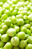 Green peas with waterdrops Stock Photo