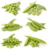 Green peas. On white background Royalty Free Stock Photos