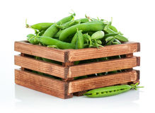 Green peas in wooden box Royalty Free Stock Image