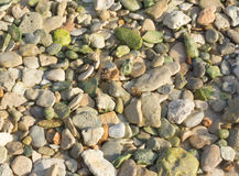 Green pebble rocks Royalty Free Stock Photo