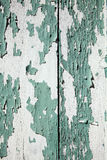 Green peeling paint wood background Royalty Free Stock Photography