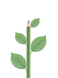 Green Pencil With Leaves Stock Photos