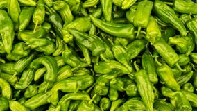 Green peper chili. background food Royalty Free Stock Image
