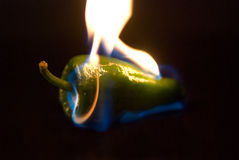 Green pepper. A green pepper on fire Royalty Free Stock Images