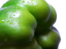 Green Pepper #6. A crisp, wet, green pepper royalty free stock images