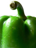 Green Pepper #8. A crisp, wet, green pepper stock photo