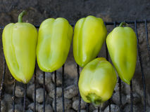 Green pepper BBQ stock images