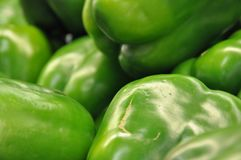 Green pepper cluster Stock Photos