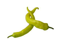 Green pepper embrace isolated. Two green pepper placed in a funny embrace like position Stock Image