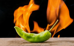 Green pepper with flam Stock Images