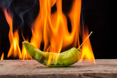 Green pepper with flame Stock Images
