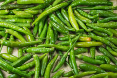 Green pepper Stock Photography