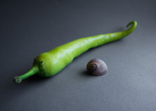 Green Pepper and Snail Royalty Free Stock Images