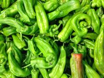 Green pepper. A texture of green peppers in a market of hawler stock images