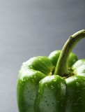 Green pepper with water drops on the grey background Royalty Free Stock Photography