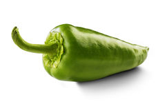 Green pepper. On white background Royalty Free Stock Photos
