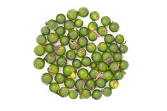 Green peppercorns Royalty Free Stock Photography