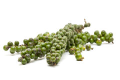 Green peppercorns Stock Image