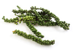 Green peppercorns on the drupe. A drupe of green peppercorns from the vine, over white with a light shadow. These are the peppers from which black pepper is made royalty free stock photo