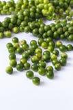 Green peppercorns Royalty Free Stock Photos