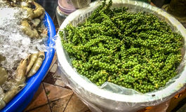 Green Peppercorns from Kampot Royalty Free Stock Photo