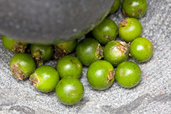 Green peppercorns in mortar Stock Photos