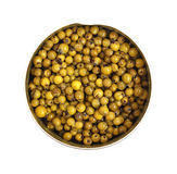 Green Peppercorns Opened Can Stock Image