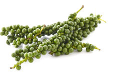 Green peppercorns. On white background royalty free stock image