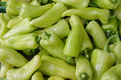 Green peppers stock image