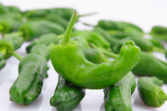 Green peppers Royalty Free Stock Photography
