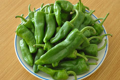Green peppers. Arranged on a plate on the table Royalty Free Stock Image