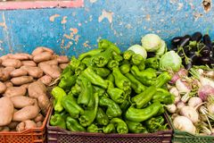 Green peppers on a blue background stock photography