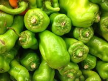 Green peppers Stock Images
