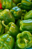 Green Peppers. Fresh green peppers at the local market royalty free stock images
