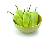 Green peppers in green bowl with Drops of water Stock Photography