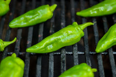 Green Peppers on the Grill. Green chili peppers roast on the grill stock images