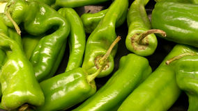 Green Peppers Royalty Free Stock Photos
