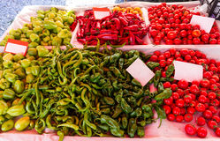 Green peppers and red tomatoes Stock Images