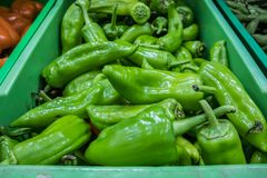 Green peppers in super market stock image