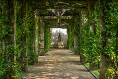 Green pergola Royalty Free Stock Image