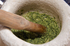 Green pesto Royalty Free Stock Image
