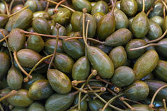 Green pickled big capers close up background Royalty Free Stock Photography