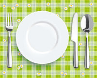 Green Picnic Blanket Plate Spoon Knife Fork Royalty Free Stock Photos