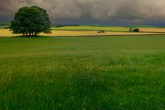 Green, picture-postcard, grassy farmland under an overcast sky in nortern England royalty free stock images