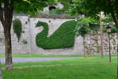Green picture on the wall in Bergamo Stock Photos