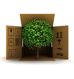 Green piece of nature product delivery Stock Photo