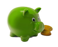 Green Piggy Bank. Green plastic piggy bank with large gold coins Stock Photography