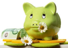 Green Piggy Bank. With daisy flower in mouth and one hundred euro Stock Photo