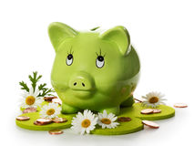 Green Piggy Bank. Conserve the environment and save money, green piggy bank between daisies and coins on flower shaped felt meadow Royalty Free Stock Images