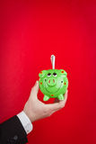Green Piggy Bank. An businessman's hand holding a green piggy bank stuffed with money, on a red background Stock Photo